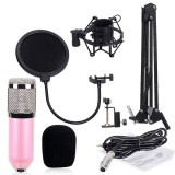 BM-800 Mic Kit Condenser Microphone with Adjustable Mic Suspension Scissor Arm, Shock Mount and Double-layer Pop Filter, For Studio Recording, Live Broadcast, Live Show, KTV, etc. (Pink)