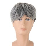Middle And Old Age Men Short Straight Hair Cosplay High-temperature Fiber Wig