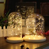 Clear Glass Display Dome Cloche Bell Jar Wooden Base DIY Decorations With 20 LED Fairy String Light
