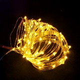 Waterproof 10M 100LED Colorful Warm White Pure White Fairy String Light for Outdoor Christmas DC3.3V