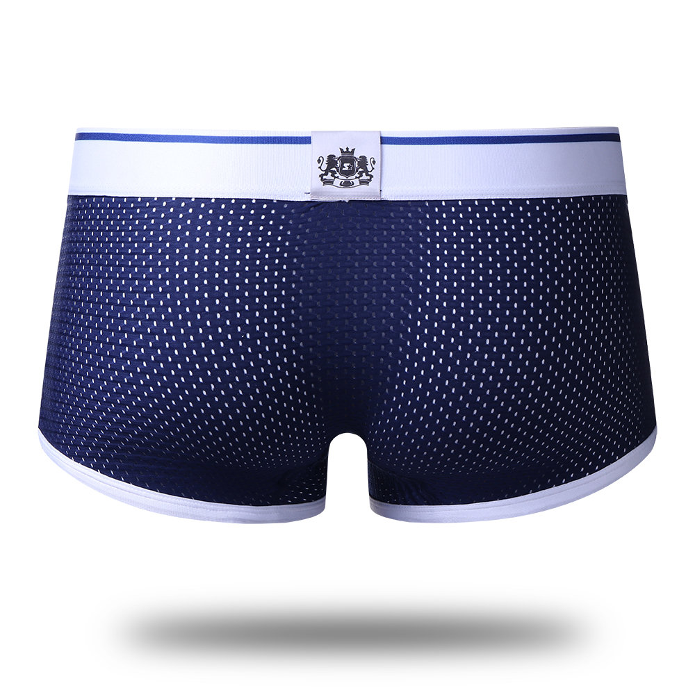 Men U Convex Pouch Ice Silk Mesh Breathable Low Waist Boxer Underwear