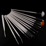 15pcs Nail Art Design Painting Pen Polish Brush Set +5pcs 2 Way Dotting Nail Pen