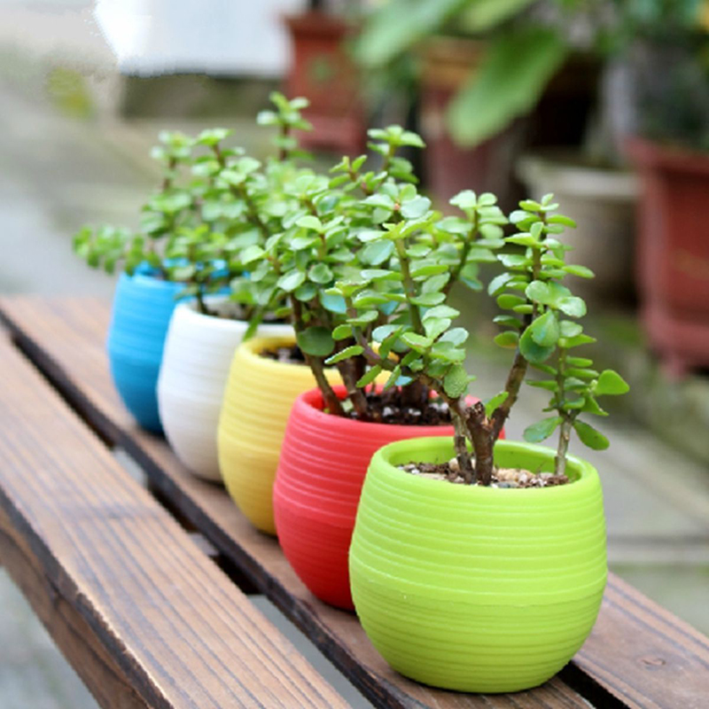 Mini Plastic Flower Pot Succulent Plant Flowerpot Home Office Decor
