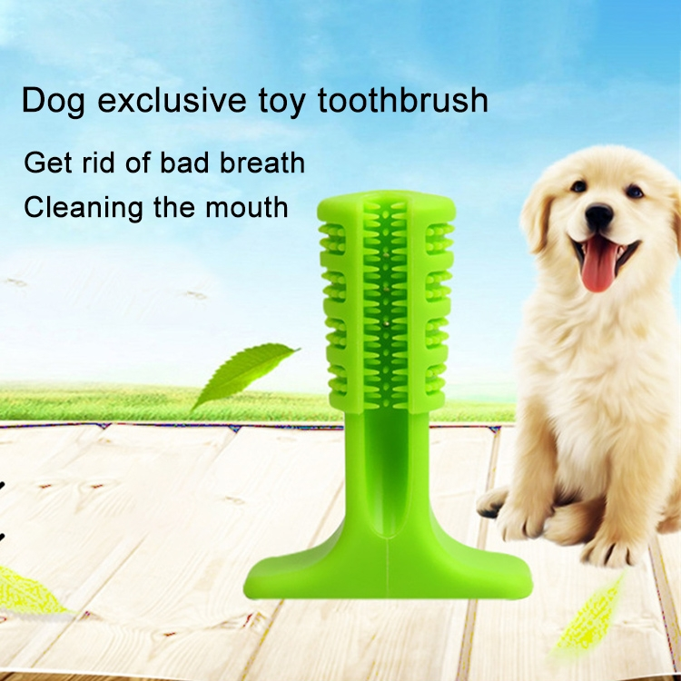 Rubber Molar Stick Toothbrush for Dogs, Size: S (Blue)