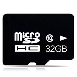 MC2535.jpg