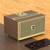 Oneder V6 Portable Wireless Bluetooth Speaker, Support Hands-free & FM & TF Card & AUX & USB Drive (Bronze)