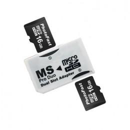MC0065.jpg