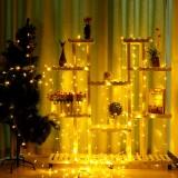 3Mx3M 300LED Curtain String Light Fairy Holiday Lamp Festival Christmas Wedding Decor AU Plug AC220V