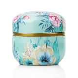 HOOMIN Tea Box Tea Jar Storage Holder Tea Caddies Matcha Container Mini Coffee Powder Organizer Cans Multifunction Round Metal, Color: At a glance