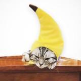 Creative Turned Funny Pet Cat Teddy Festival Funny Banana Headgear