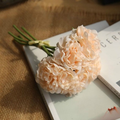 5 Heads Fake Flowers Artificial Flowers Peony Bouquet for Wedding and Home Decoration (Champagne)