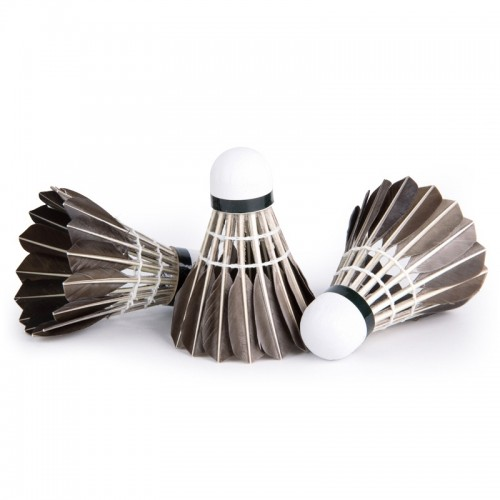 PTOTOP TP4137 12 in 1 Black Goose Feather Material Professional Competition Training Badminton