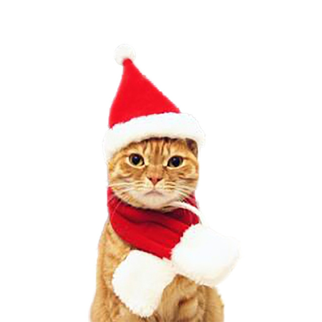 Cat Dog Christmas Hat Around Christmas Clothes Accessories, Size: L