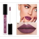 QIC Q905 Liquid Lipstick Professional Makeup Matte Lipstick Long Lasting Cosmetics Lip Gloss (1)