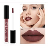 QIC Q905 Liquid Lipstick Professional Makeup Matte Lipstick Long Lasting Cosmetics Lip Gloss (10)