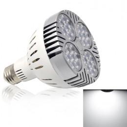 LED2264.jpg