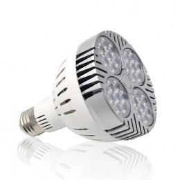 LED2264_1.jpg