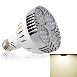 LED2265.jpg