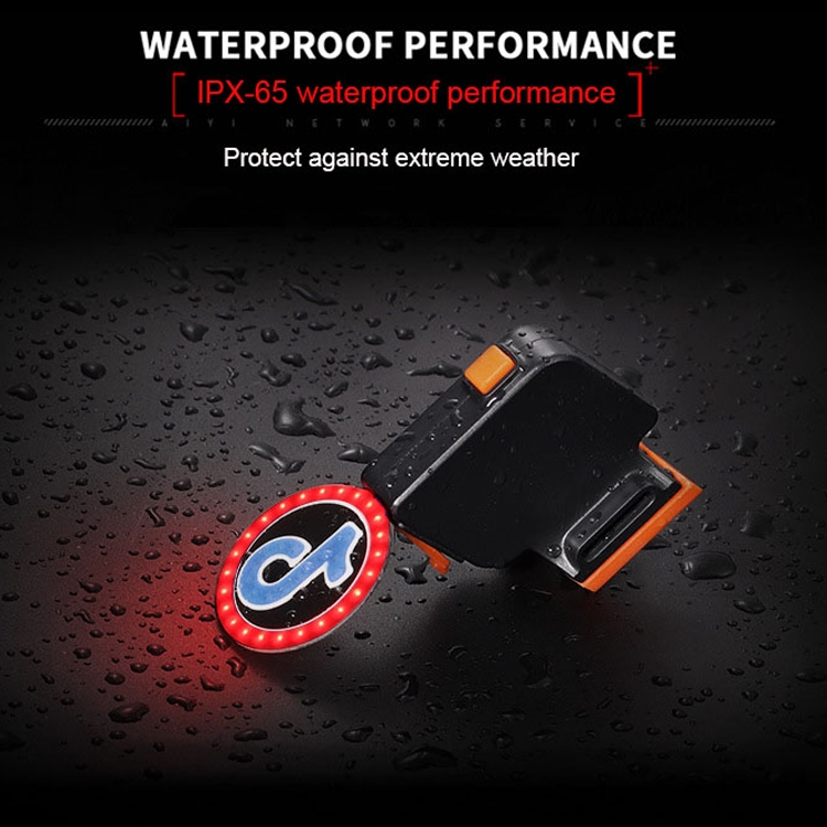USB Charging Red Blue Color Riding Light Rear Lamp Safety Warning Light (Aquarius Style)