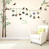 Bird Photo Tree Home Decor Living Room Bedroom 3D Wall Art Decal DIY Mural