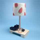 Creative DIY Small Table Lamp Technology Small Production Primary School Students Manual Materials Science Experiment