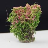 Artificial Handmade Model Material Sand Table Building Bush Flower Finished Flower (Peach Safflower)