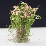Artificial Handmade Model Material Sand Table Building Bush Flower Finished Flower (Pink Flower)