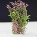 Artificial Handmade Model Material Sand Table Building Bush Flower Finished Flower (Purple Flower)