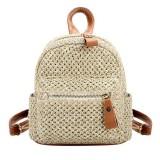 Women's Fashion Vintage Lady Straw Beach Bag Weave Shoulder Bags Rattan Bag Handmade Bohemian Chic Mini Backpack Summer Handbag