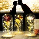 Romantic Eternal Rose Flower LED String Night Light Gift For Birthday Wedding Valentine's Day