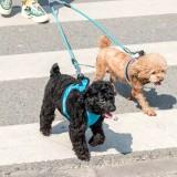 Jordan&Judy Double Head Dog Leash Rope From Xiaomi Youpin 4 Modes Reflective Pet Walking Leash Collar Dog Supplies