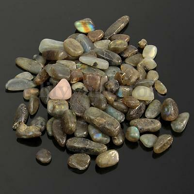 1/4 LB Natural Labradorite Mini Tumbled Gemstone Stone Crystals Healing Home Decorations